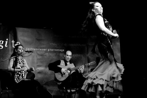 3692El flamenco y las diferentes actividades